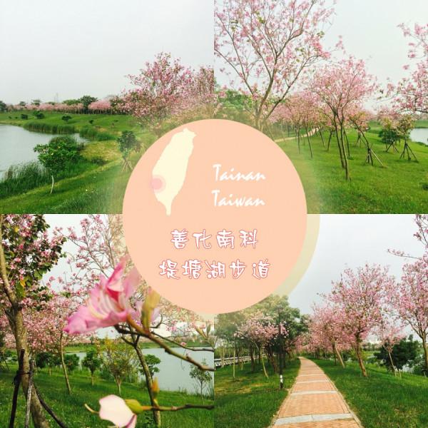 台南市 休閒旅遊 景點 公園 堤塘湖