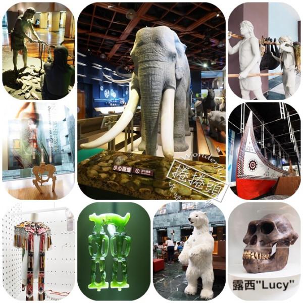 台東縣 觀光 博物館‧藝文展覽 台東史前博物館