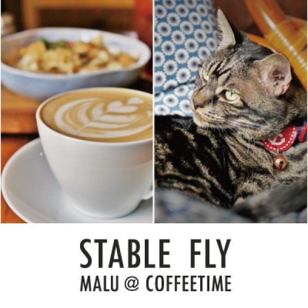 彰化縣 餐飲 飲料‧甜點 飲料‧手搖飲 Stable Fly穩定飛行模式