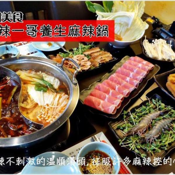 桃園市 美食 餐廳 火鍋 麻辣一哥養生麻辣鍋