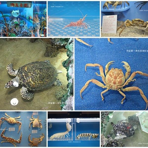 澎湖縣 休閒旅遊 景點 博物館 竹灣螃蟹博物館