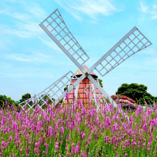 台中市 觀光 觀光工廠‧農牧場 中社觀光花市