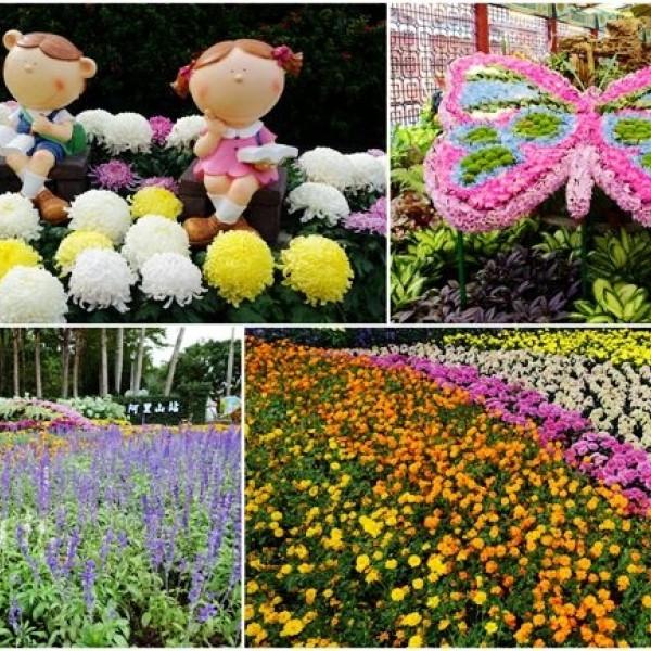 台北市 休閒旅遊 景點 公園 2018士林官邸菊展「菊世遨遊」