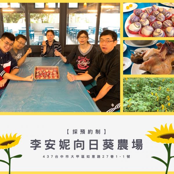 台中市 觀光 觀光工廠‧農牧場 李安妮向日葵農場