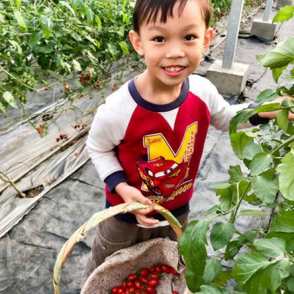 新竹縣 觀光 觀光工廠‧農牧場 威榮喝豆漿長大的蕃茄窩