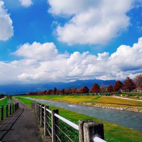 宜蘭縣 觀光 觀光景點 三星落羽松秘境