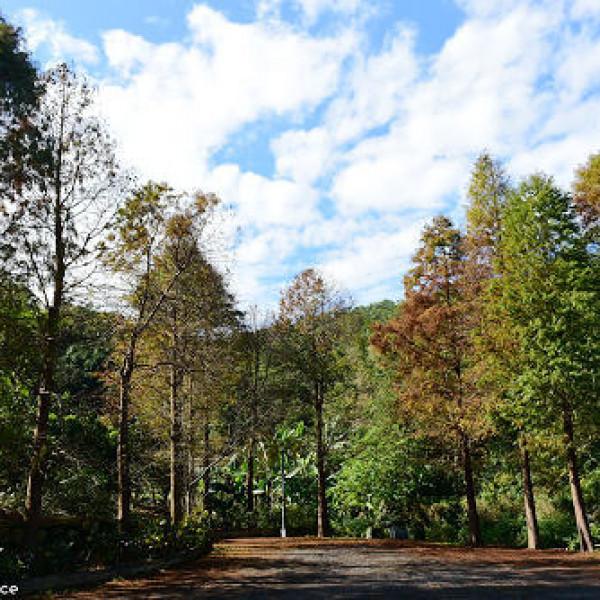 台北市 觀光 公園 麗山公園