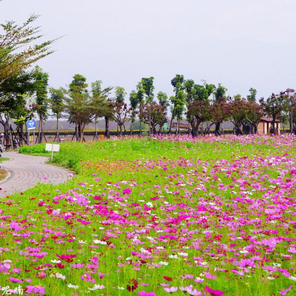屏東縣 觀光 公園 佳冬運動公園