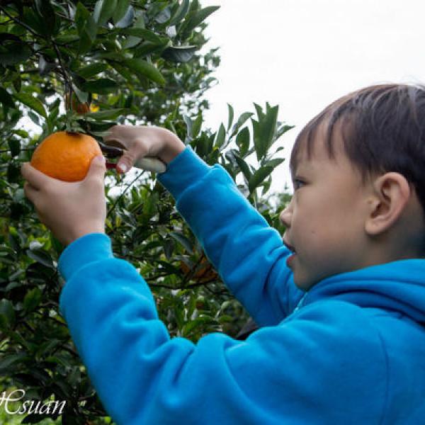 苗栗縣 觀光 觀光工廠‧農牧場 銘珠農場