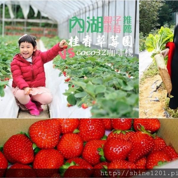 台北市 休閒旅遊 景點 觀光農場 桂香草莓園