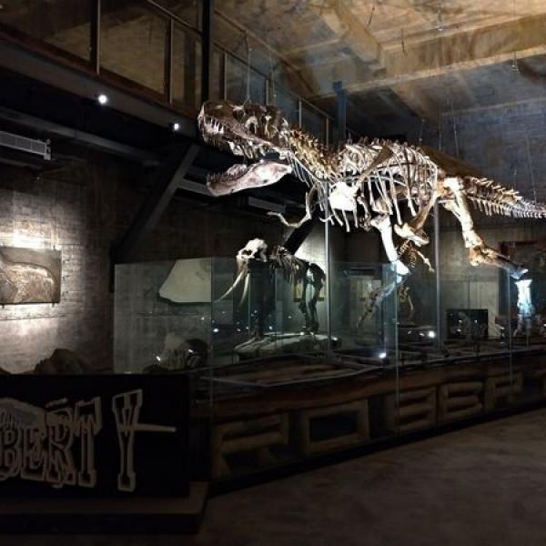 宜蘭縣 觀光 博物館‧藝文展覽 瘋狂夢想博物館 Robert-Y廢墟