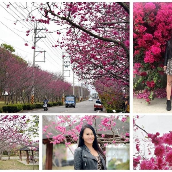 台中市 觀光 公園 新社區復盛公園