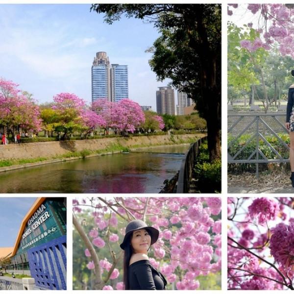 台中市 觀光 觀光景點 西屯區朝馬國民運動中心
