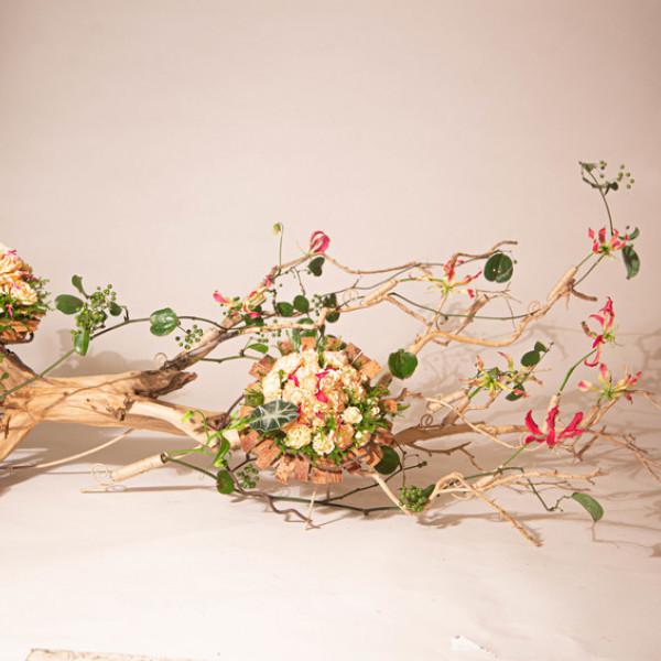 新竹縣 觀光 博物館‧藝文展覽 苙森林 國際藝術共享平台