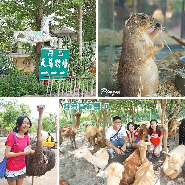 台中市 休閒旅遊 景點 觀光農場 月眉天馬牧場