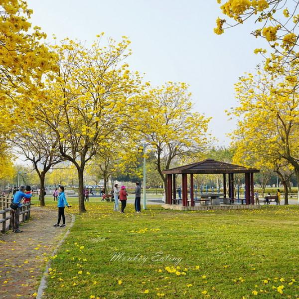 台中市 觀光 公園 廍子公園