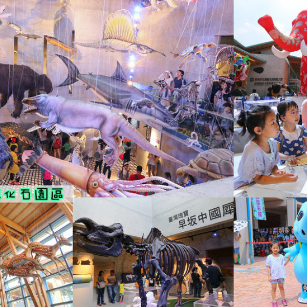 台南市 休閒旅遊 景點 博物館 臺南左鎮化石園區