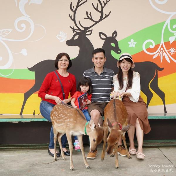 桃園市 休閒旅遊 景點 動物園 山角鹿場