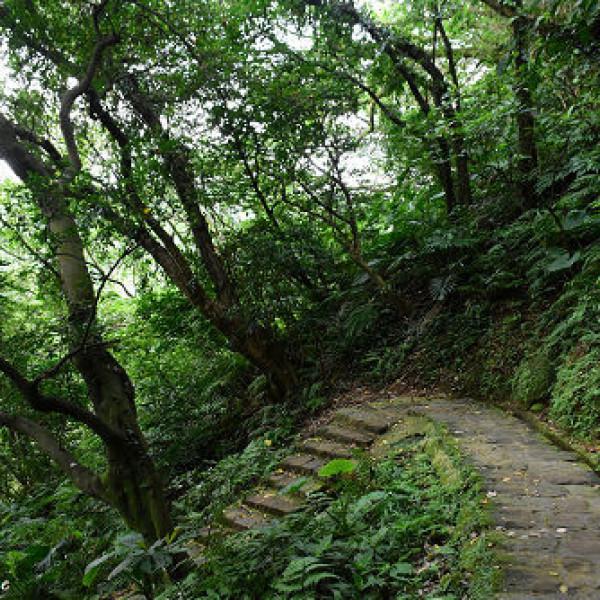 台北市 休閒旅遊 景點 景點其他 白鷺鷥山親山步道