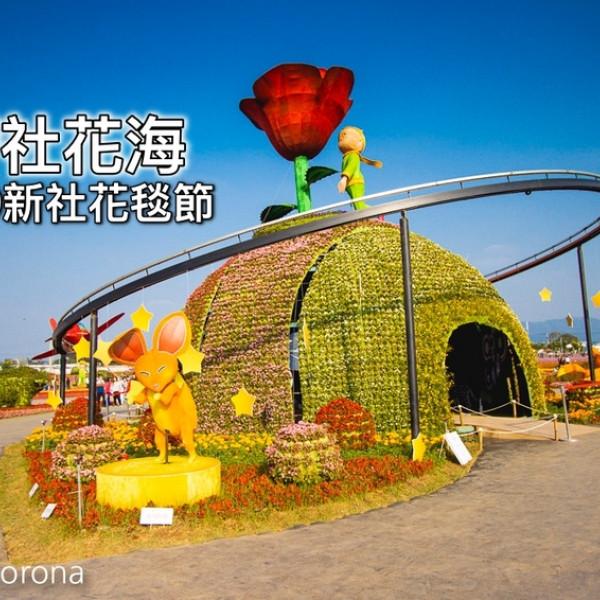 台中市 觀光 公園 2019新社花毯節