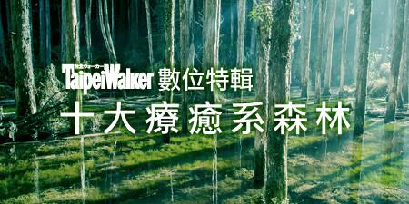 宛如走入電影場景 這真的是台灣嗎!?全台十大療癒系森林 如夢似幻令人屏息!