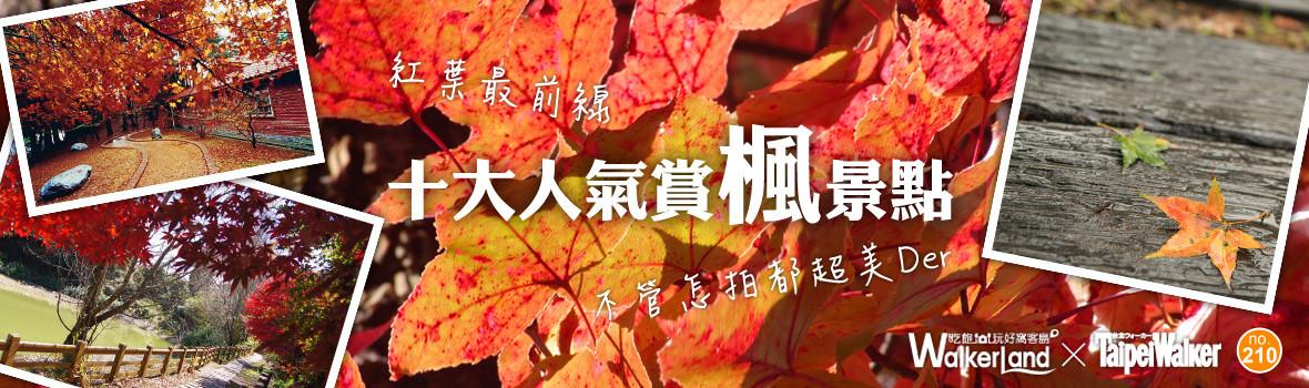 賞楓不用去日本!十大人氣賞楓景點推薦!福壽山、奧萬大一生必去!