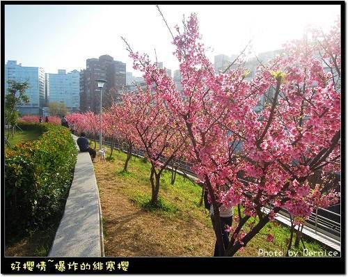台北市內湖區 樂活公園