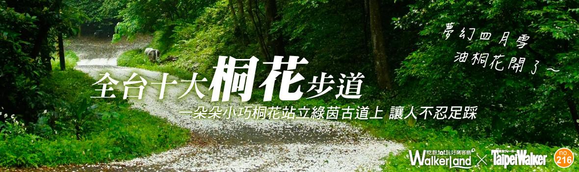 夢幻四月雪紛飛 油桐花開了~浪漫邂逅全台十大桐花步道!賞桐小旅行Let's Go!