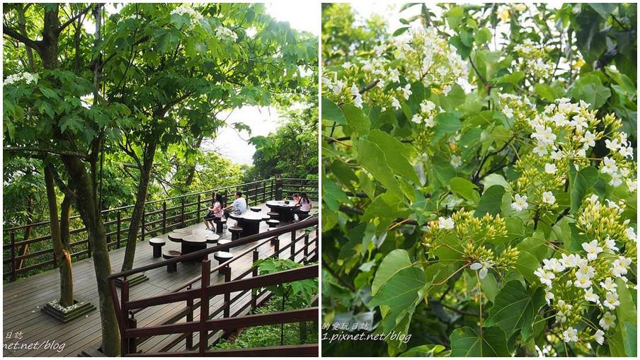 台北市文山區 仙跡岩步道