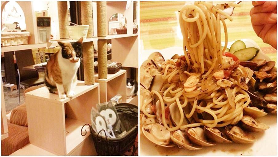 新北市三芝區 Coffee Door & Meo-woo 貓雜貨咖啡館