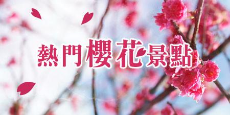 賞櫻人氣景點 全台櫻花粉雪盛開 立馬安排一場賞櫻之旅吧~