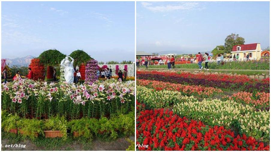 台中市后里區 中社觀光花市