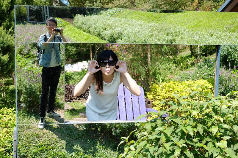 〔苗栗〕:明德水库旁的紫色浪漫☆薰衣草森林图片