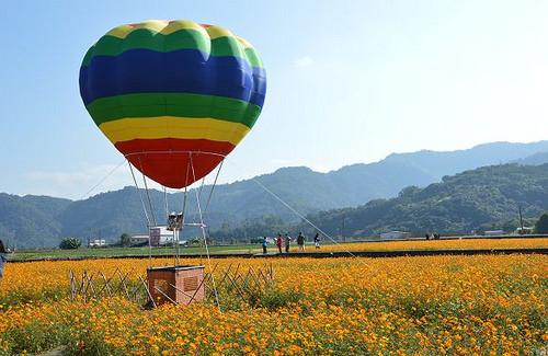 三星花卉氣球嘉年華,花海,熱氣球,賞花