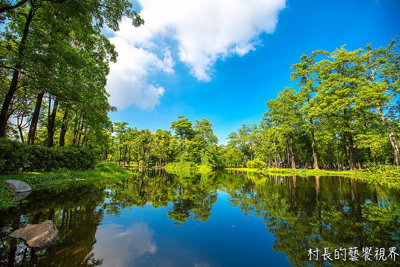 【游记】{高雄.凤山区}大东湿地公园之高雄版忘忧森林图片