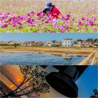 金門縣 休閒旅遊 景點 海邊港口 建功嶼 照片