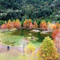 苗栗縣休閒旅遊 住宿 溫泉飯店 南庄雲水度假森林 照片