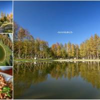 新竹縣美食 餐廳 中式料理 中式料理其他 大樂之野 景觀餐廳 照片