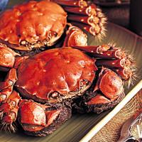 秋天吃蟹別客氣!五星粵菜望月樓推出「美哉秋蟹」,要讓饕客們品嚐到最道地的萬里蟹、大閘蟹料理。