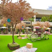 母親節也可以帶媽媽賞櫻!MITSUI OUTLET PARK林口準備超美櫻花林給愛打卡的媽媽們。