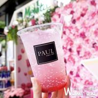 限時3天打卡!PAUL x Melvita聯名打造信義區最夢幻「粉紅玫瑰花屋」,獨家只送不賣「玫果漸層氣泡飲」搶攻最美街拍熱搜。