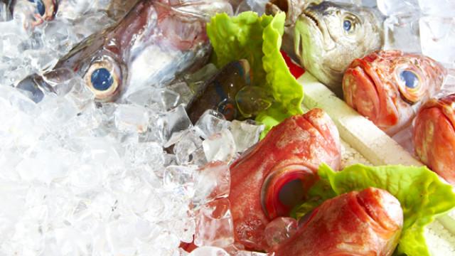 英吉利活海鮮餐廳