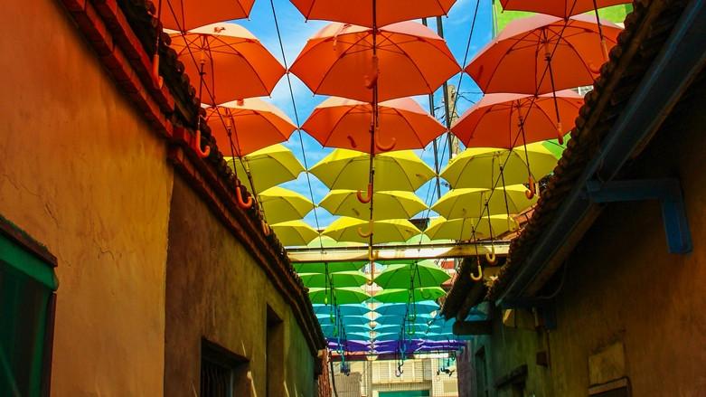 彰化縣和美鎮 卡里善之樹-彩虹屋